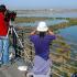O Algarve reune enormes potencialidades no segmento turistico de observação de aves