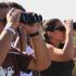 Sagres Birdwatching Festival | Video de Paulo Margalho