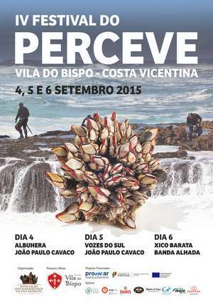 Festival do Perceve 300 _ab
