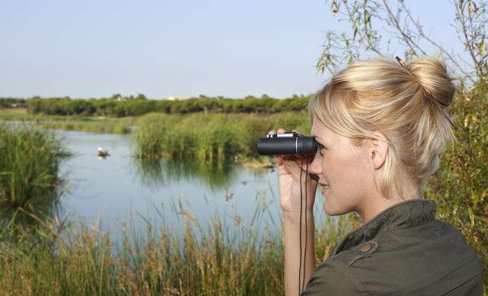 7º Festival de Observação de Aves & Atividades de Natureza