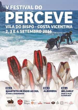 Cartaz festival do perceve 2016. 300 _ab