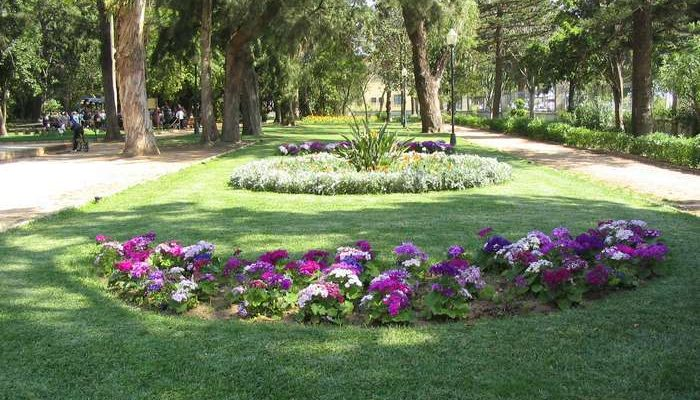 Reforço de Segurança no Jardim da Alameda em Faro
