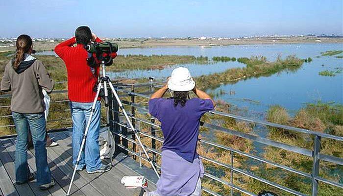Festival de Observação de Aves 2016 em Sagres