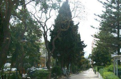 Faro adjudicou manutenção de espaços verdes na cidade