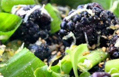 Programa 5 ao Dia promove consumo de fruta e hortícolas