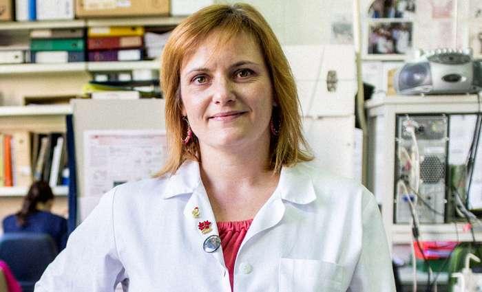 Alzheimer: Produção desregulada de moléculas mensageiras