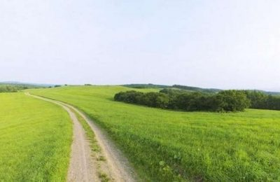 Odiana anuncia 5 cursos para Jovens Agricultores