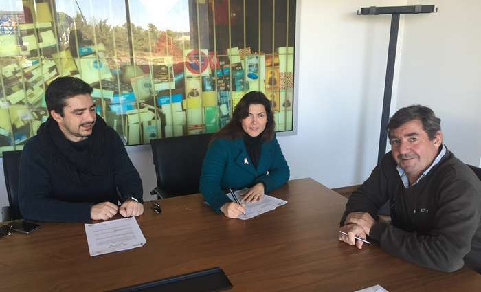 Algar coopera com a AOA no apoio ao doente oncológico