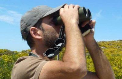 A SPEA procura voluntários para os censos de aves