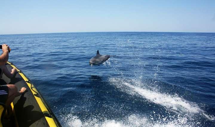 Algarve Nature Week 2017 à descoberta do natural no Algarve