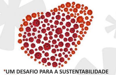 Faro adere ao projeto Vamos florir Portugal?