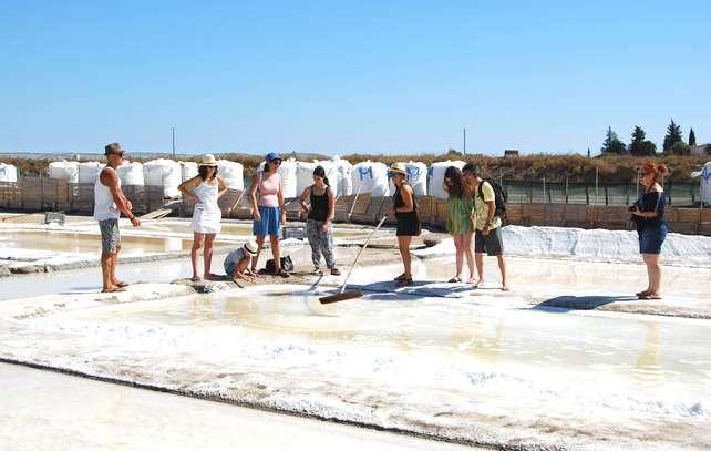 Odiana organizou Workshop de Salinas Tradicionais