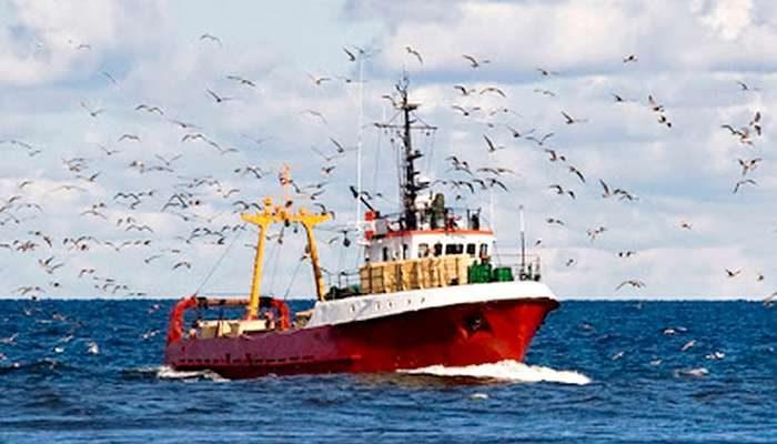 Campanha da Docapesca promove o pescado fresco