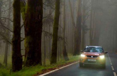 Folhas, chuva e nevoeiro: os desafios à condução no Outono