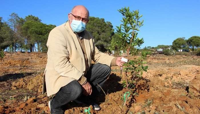 """A celebração do Dia da Floresta Autóctone, 23 de novembro, foi assinalada em Castro Marim com uma ação de Educação Ambiental no empreendimento da Verdelago, a primeira de muitas que pretende responder ao repto """"uma árvore por cada cama turística""""."""