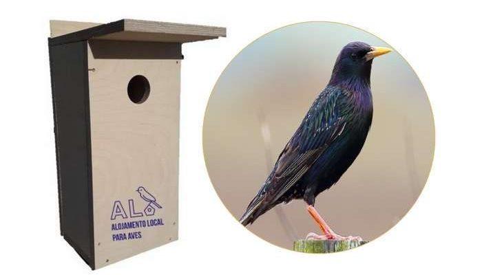 Município de Lagoa promove o Alojamento Local para Aves