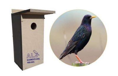 Município de Faro e Vita Nativa instalam caixas ninho na cidade